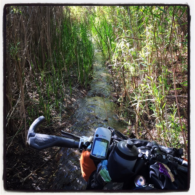 Riding on a singletrack river in Coyote Canyon